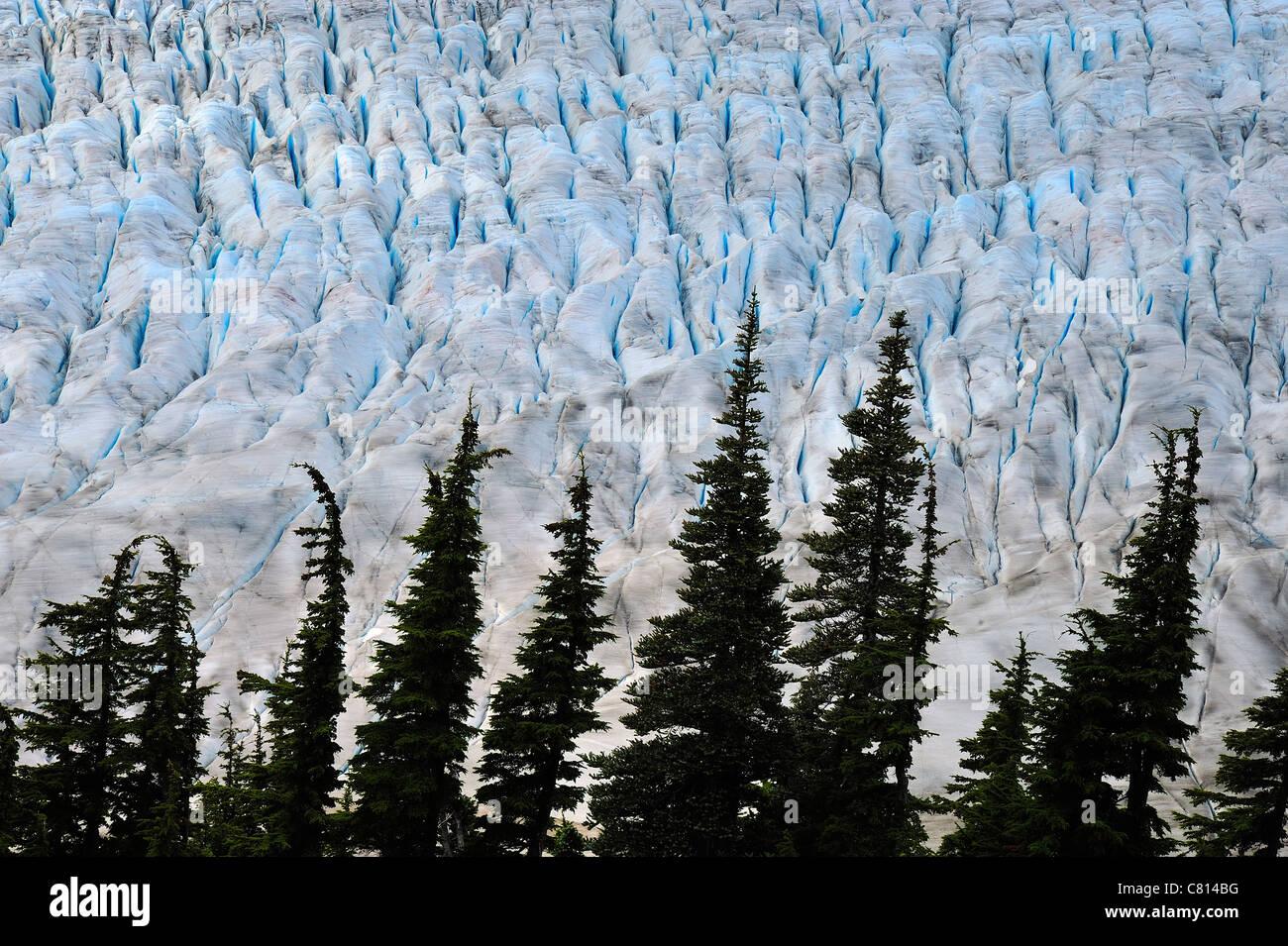 Eine Nahaufnahme Bild des blauen Eises der Salmon Gletscher in der Nähe von Stewart in British Columbia Kanada Stockbild