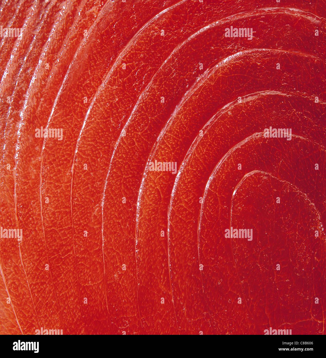 Roter Thunfisch Stockbild