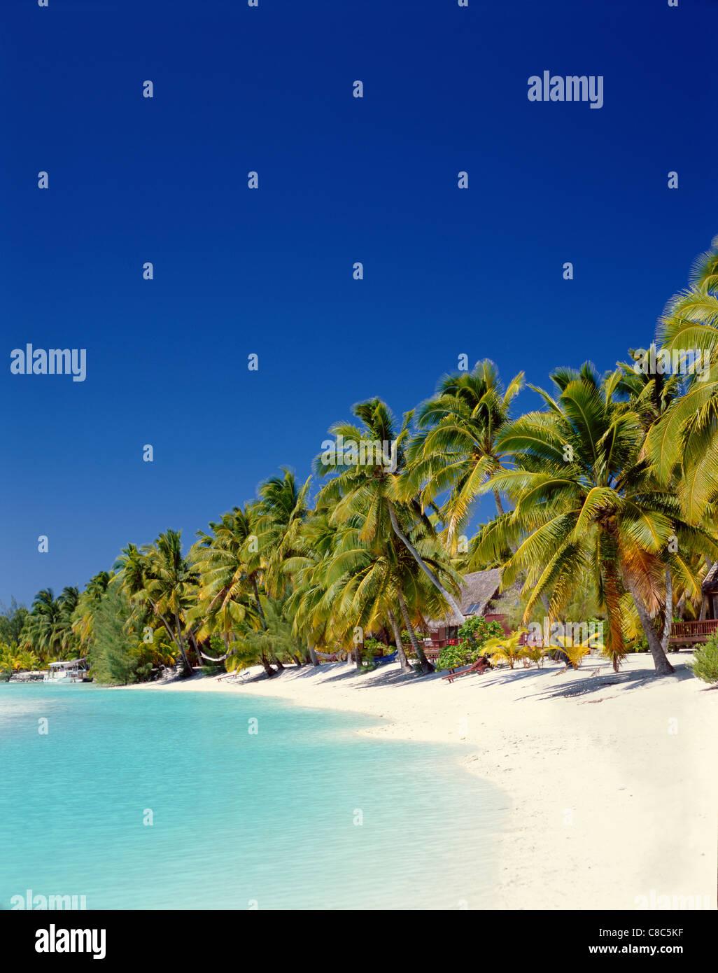 Atoll, Palmen & Tropical Beach, Insel Aitutaki, Cook-Inseln, Polynesien Stockbild