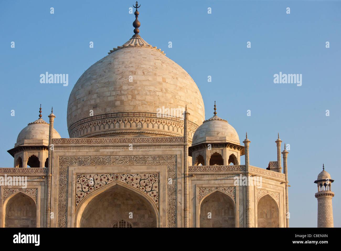 Iwans des Taj Mahal-Mausoleum, westlichen anzeigen Detail Diamant Facetten mit Bas Relief Marmor, Uttar Pradesh, Stockbild