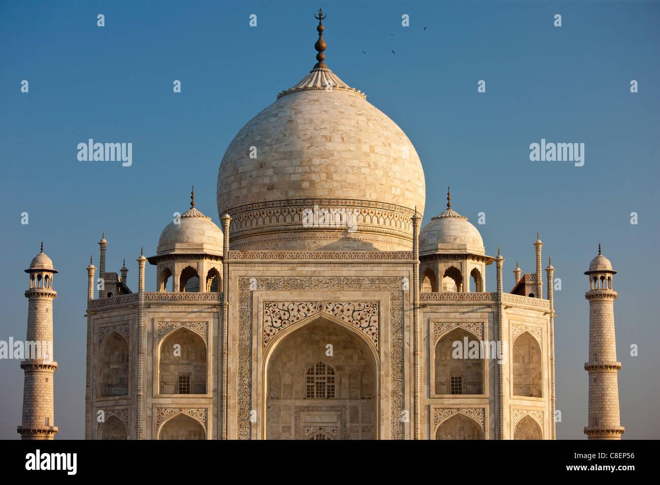 Das Taj Mahal Mausoleum Südansicht Detail, Uttar Pradesh, Indien Stockbild