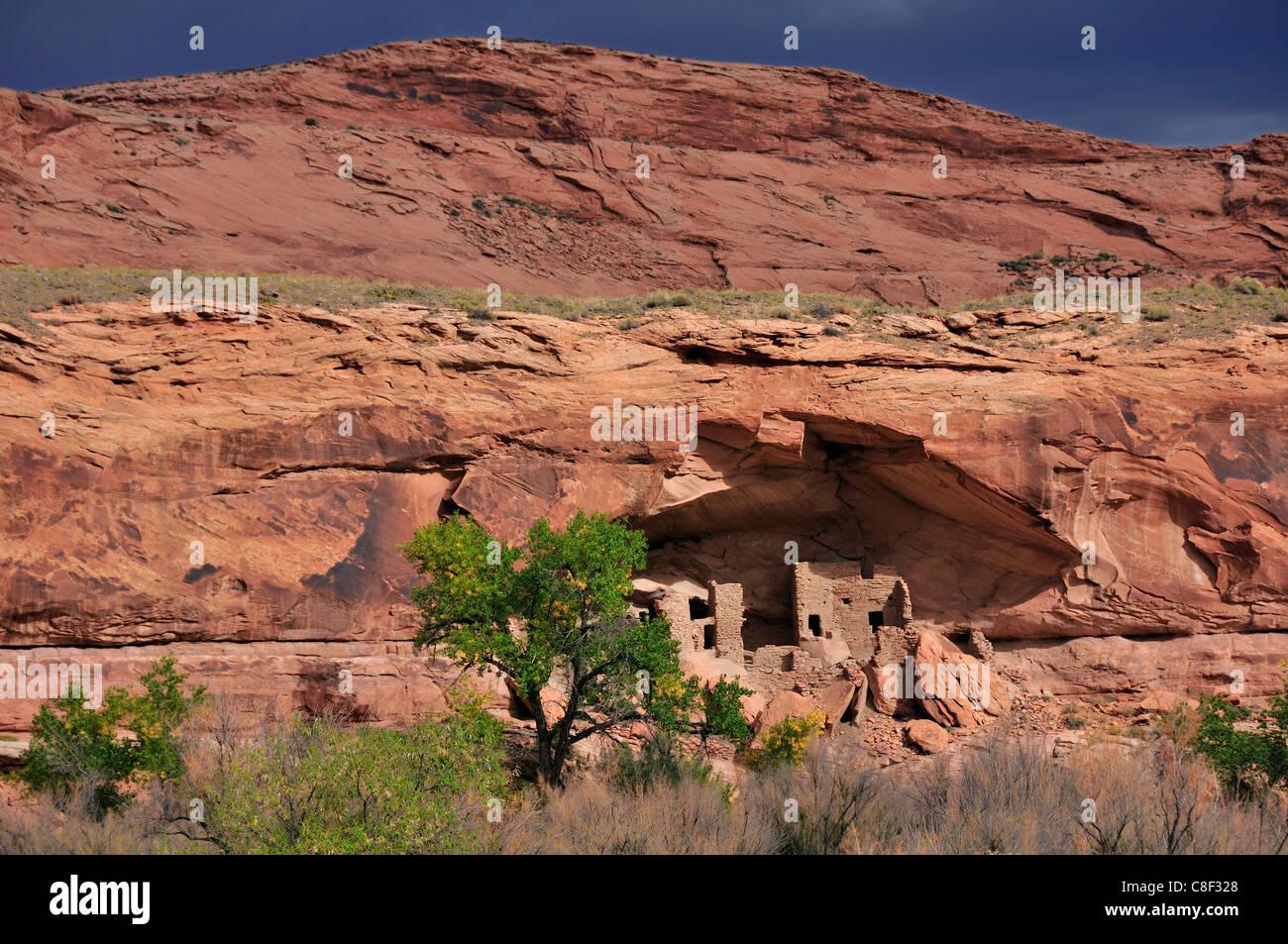 Cliff dwelling, Anasazi, Ruine, Monticello, River House, San Juan River, Bluff, Colorado Plateau, Utah, USA, Vereinigte Stockbild
