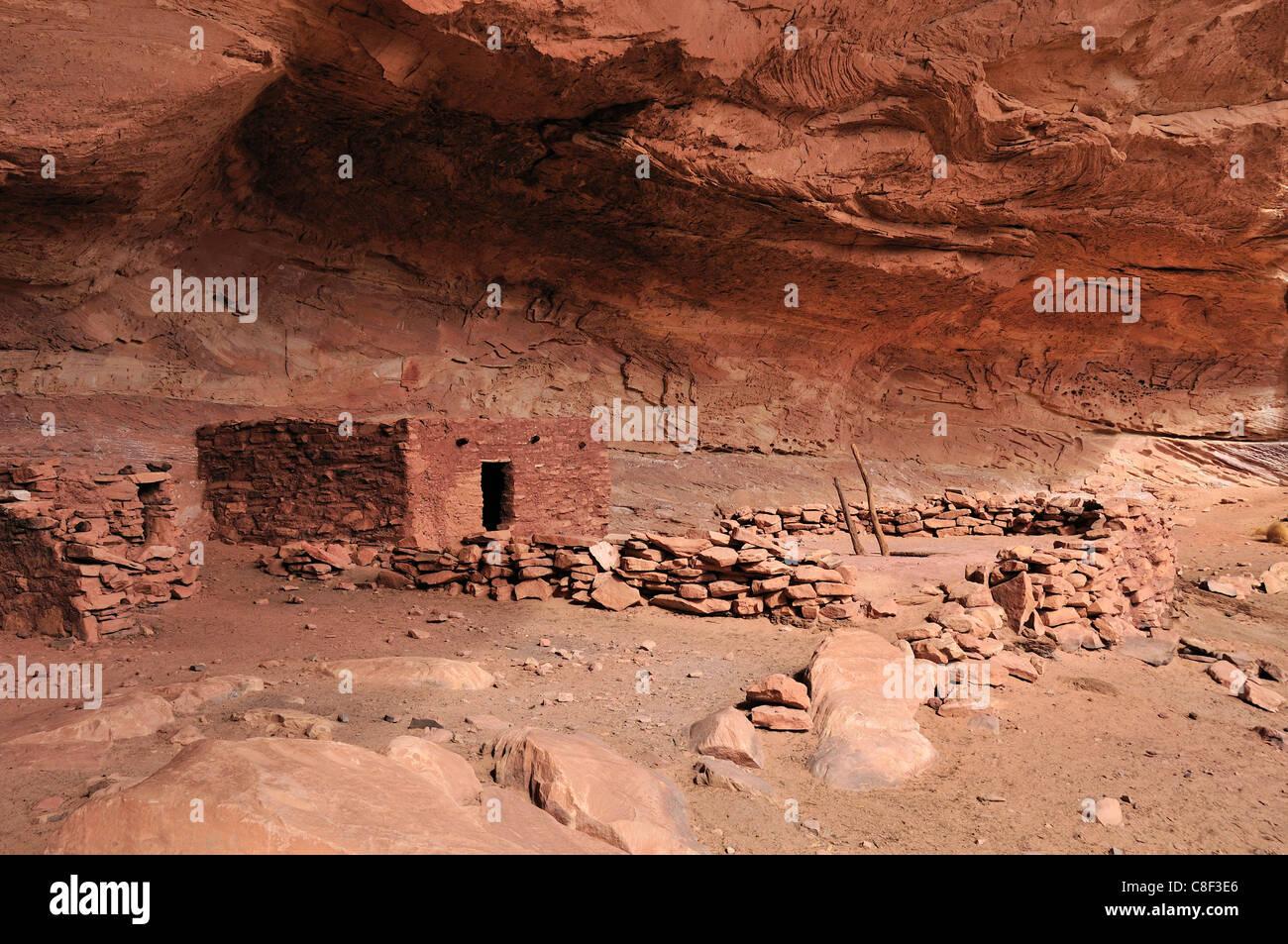 Anasazi, Cliff Dwellings, perfekte Kiva, ruinieren, Bullet Canyon, Grand Gulch primitiven Bereich, Cedar Mesa, Colorado Stockbild