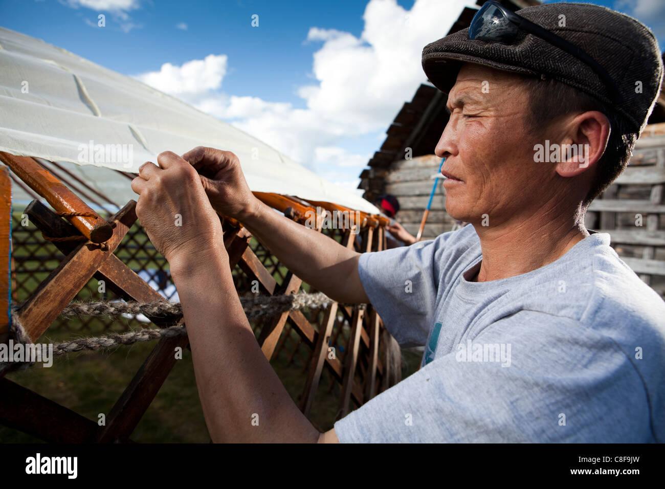 Mongolische Mann bauen Ger, Tsagaan Nuur Khovsgol, Mongolei Stockbild