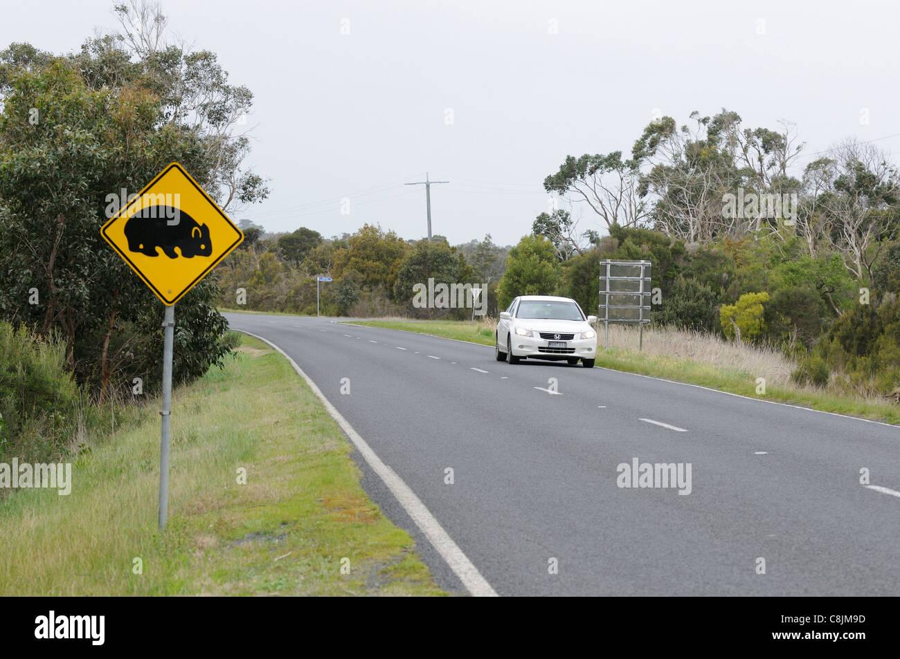Wombat Straßenschild fotografiert in Süd-Australien Stockbild