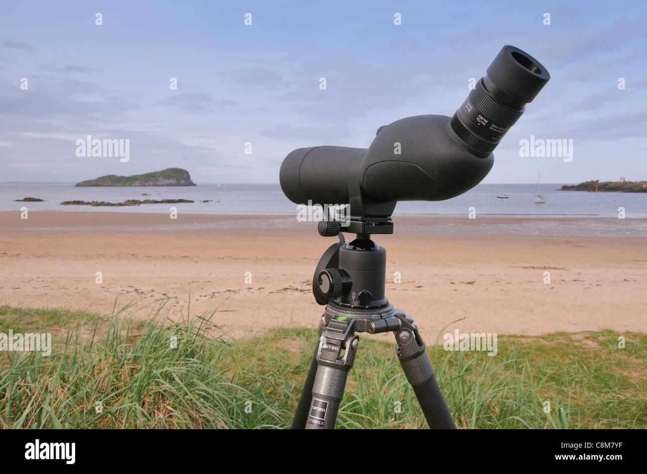 Vogelbeobachtung teleskop auf einem stativ blick auf das
