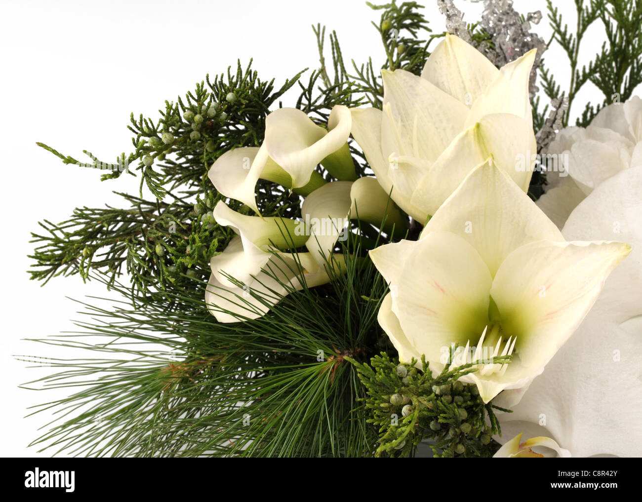Eine Nahaufnahme Von Einem Weissen Blumenstrauss Weisse Calla Lilien