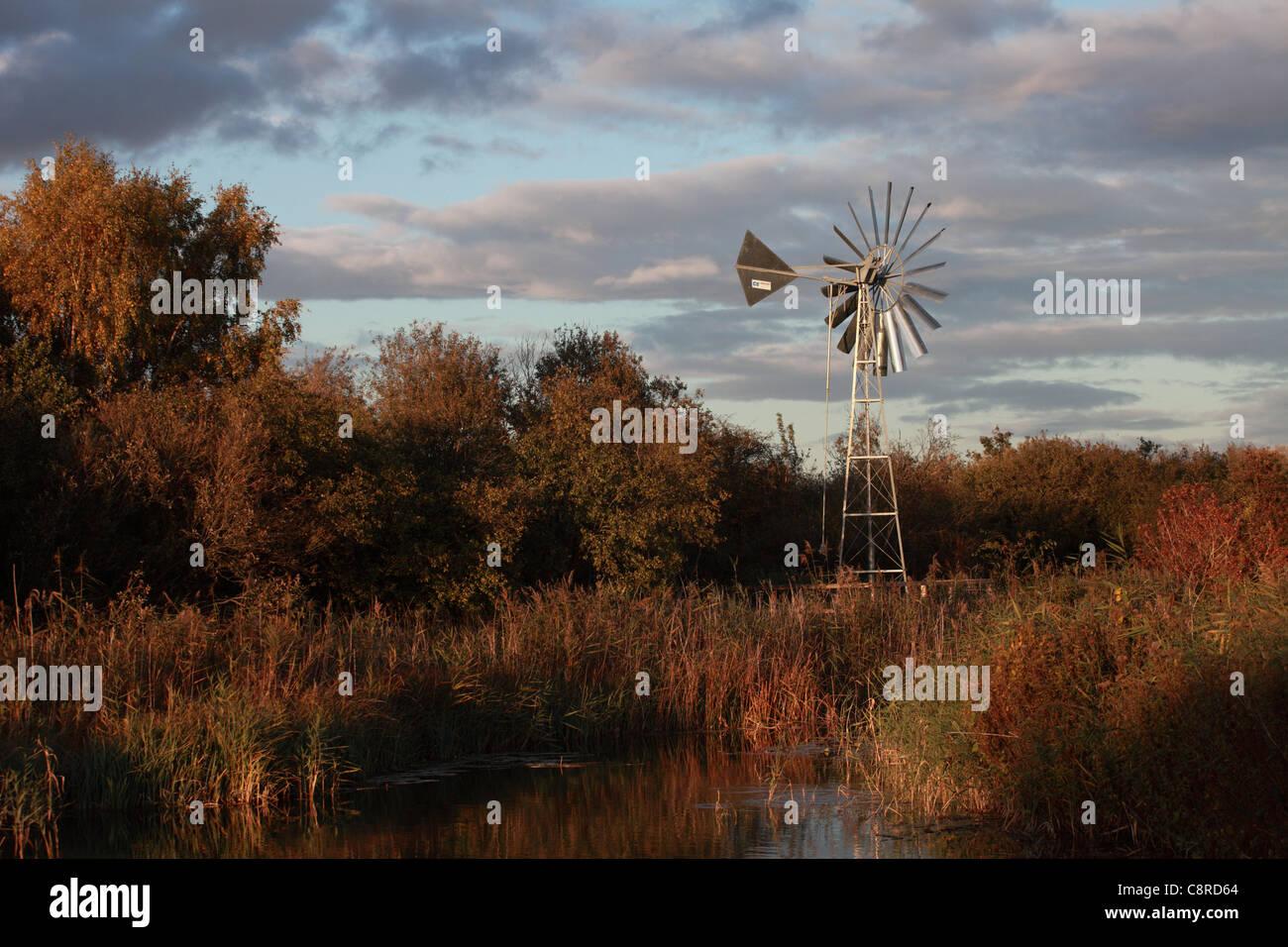 Wind angetriebene Wasserpumpe für Bewässerung, Wicken Fen, Cambridgeshire, Großbritannien Stockbild