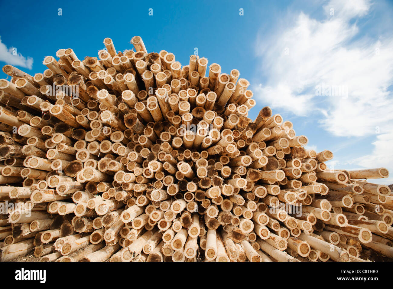 USA, Oregon, Boardman, Stapel von Holz gegen blauen Himmel Stockbild