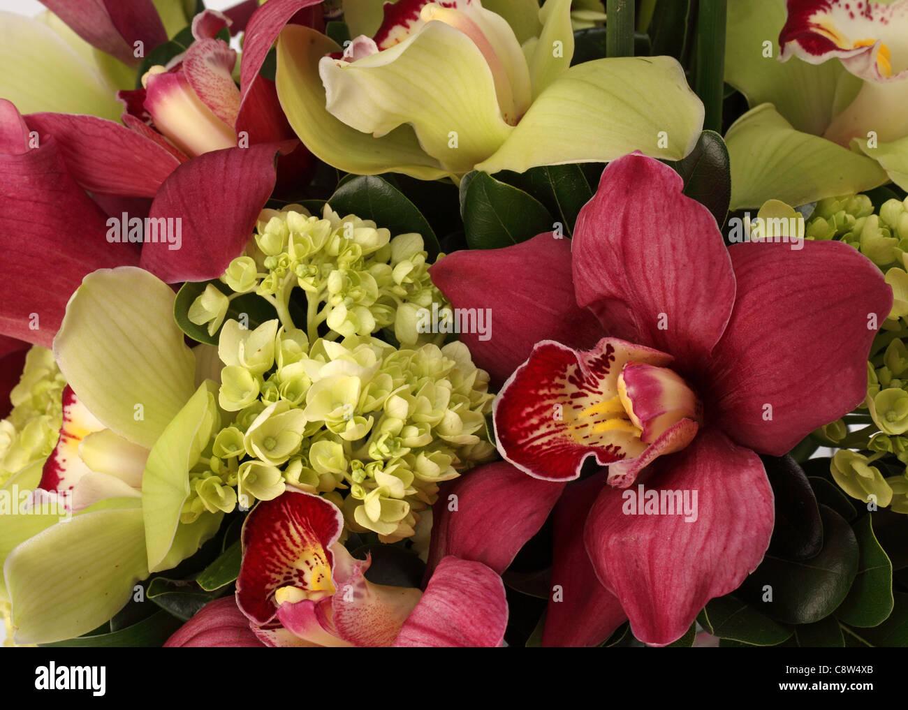 Eine Nahaufnahme von einem bunten Blumenstrauß. Rosa Calla-Lilien, grüne und rote Cymbidium Orchideen Stockbild
