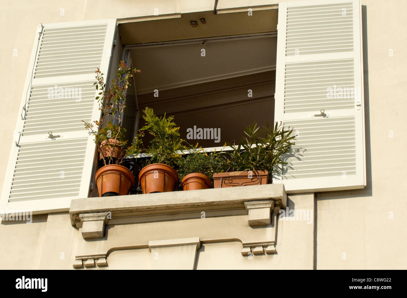 Plants Outside Window Sill Stockfotos & Plants Outside Window Sill ...