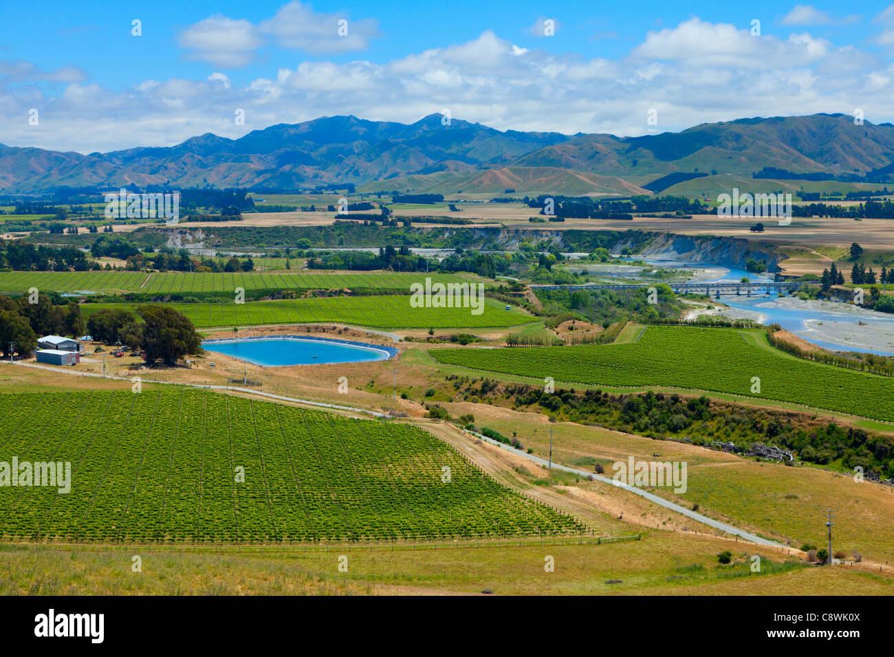 Marlborough Wine Region auf der Südinsel Neuseelands Stockfoto