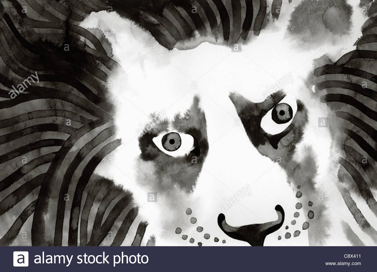 Nahaufnahme von Löwengesicht Stockbild