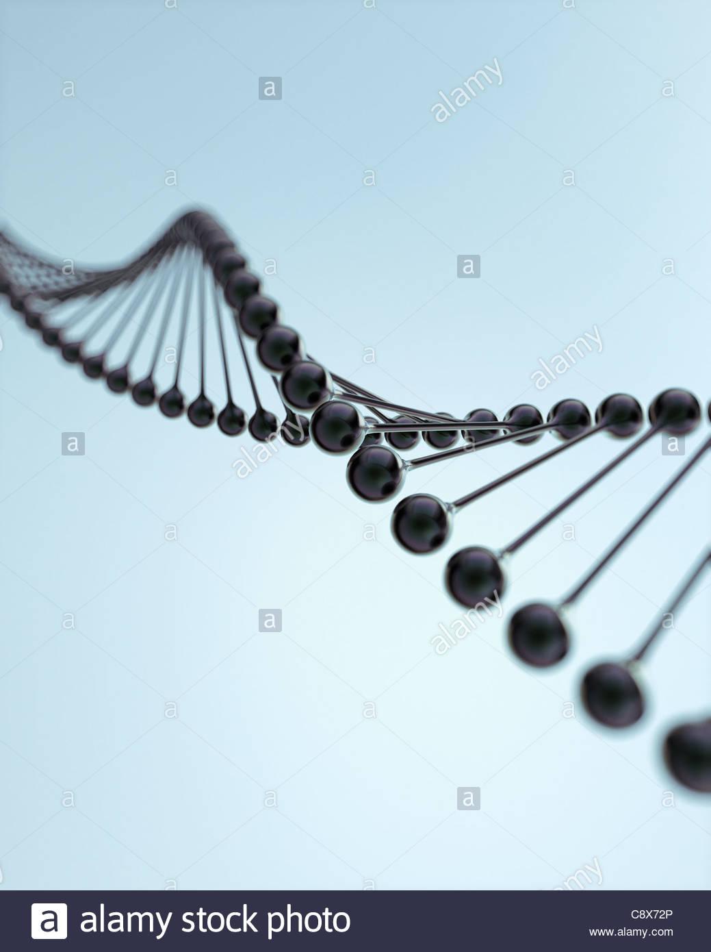 Nahaufnahme von molekularen DNA-Modell Stockbild