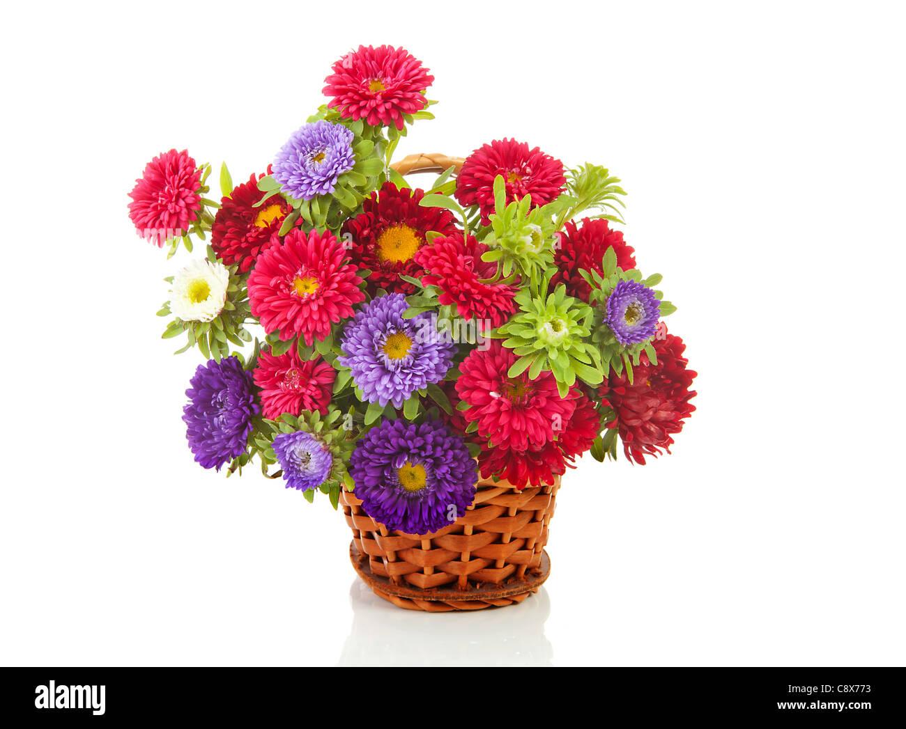 Blumenstrauß Bunte Astern In Zuckerrohr Korb Auf Weißem