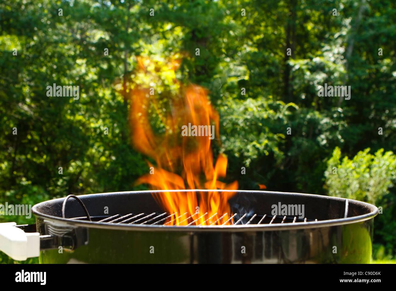 Weber Holzkohlegrill Richtig Anzünden : Weber grill reinigen die besten tipps und hausmittel focus