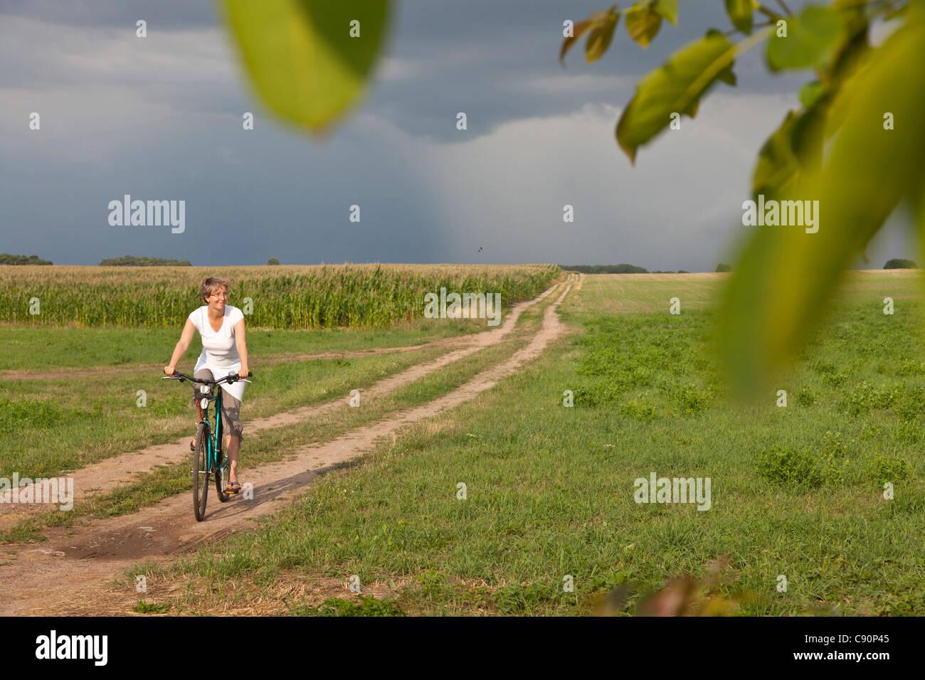 Weibliche Radfahrer vorbei Kornfeld, in der Nähe von Stolpe, Insel Usedom, Mecklenburg-Western Pomerania, Deutschland Stockbild
