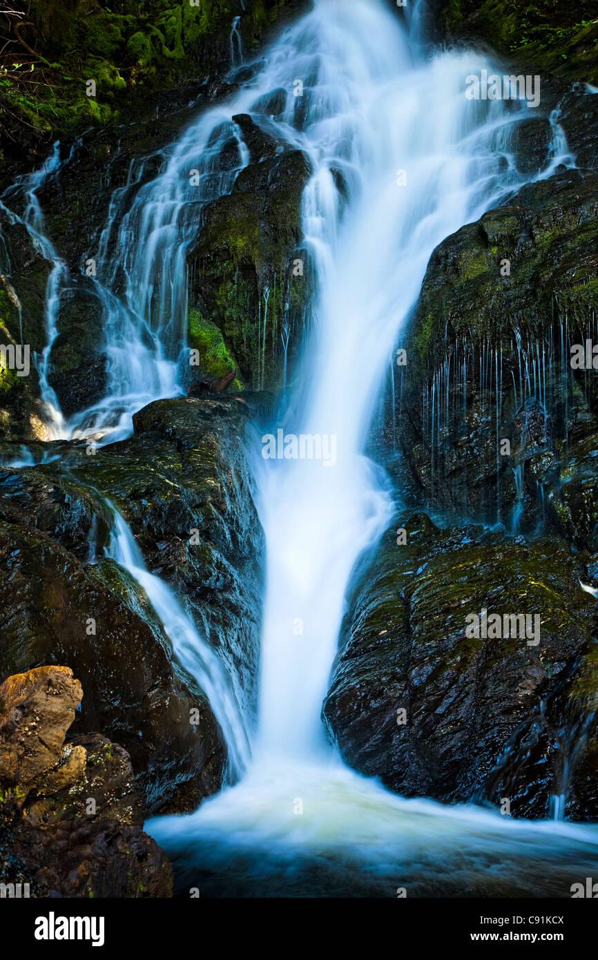 Ein Wasserfall Kaskadierung über Flechten bedeckt Felsen im Temparate Regenwald, Ketchikan, südöstlichen Stockbild