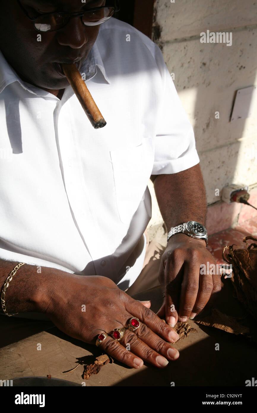 Torcedor (Zigarre Walze) macht im Ferienort Varadero, Kuba Zigarren im Zigarren Shop Casa de Los Tabaqueros. Stockbild