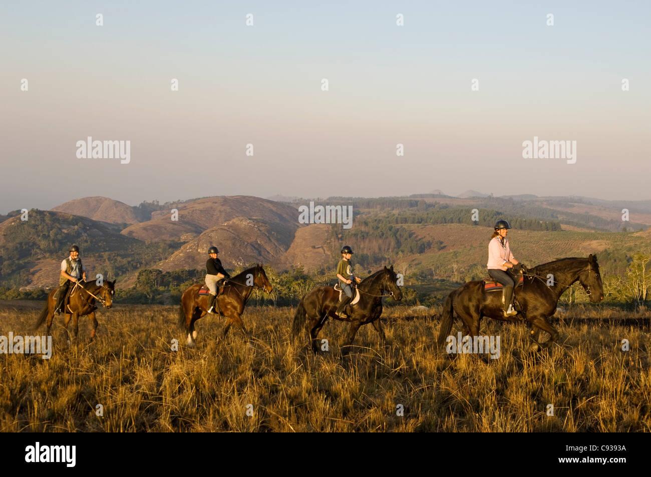Malawi, Zomba Plateau.  Ein Pferd Reiten Safari ist ein beliebter Weg, Zomba Plateau zu erkunden. Stockfoto