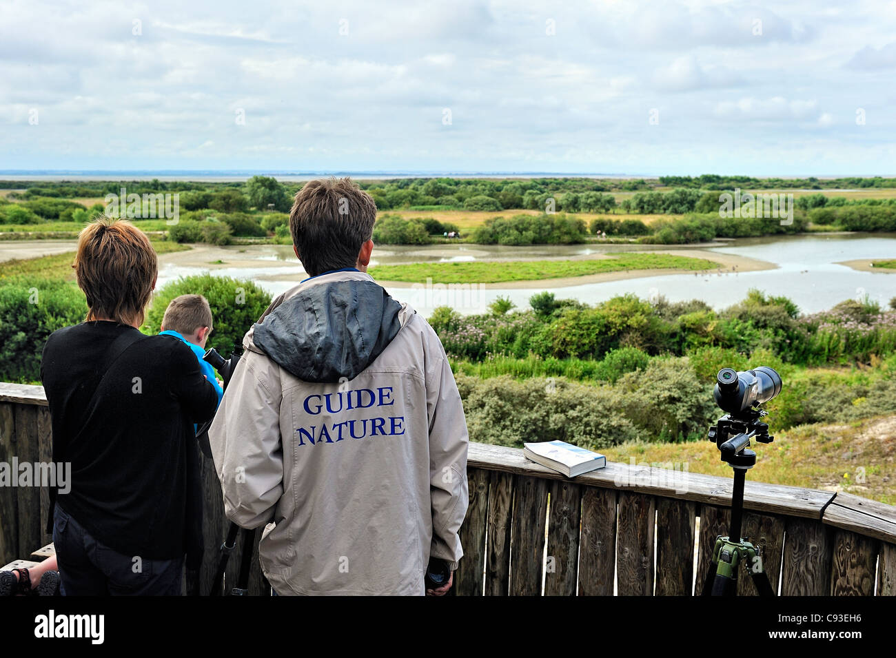Ornithologische Parc Marquenterre, Picardie, Frankreich. Stockbild