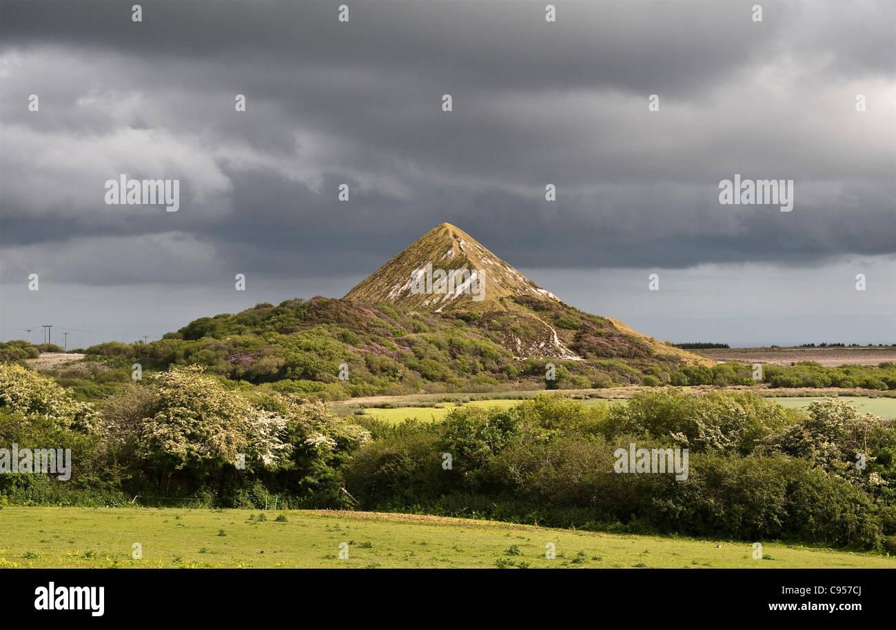 China Lehmgrube und verwöhne häufen oben St Austell, Cornwall, UK. Die Website wird langsam von der Natur Stockbild