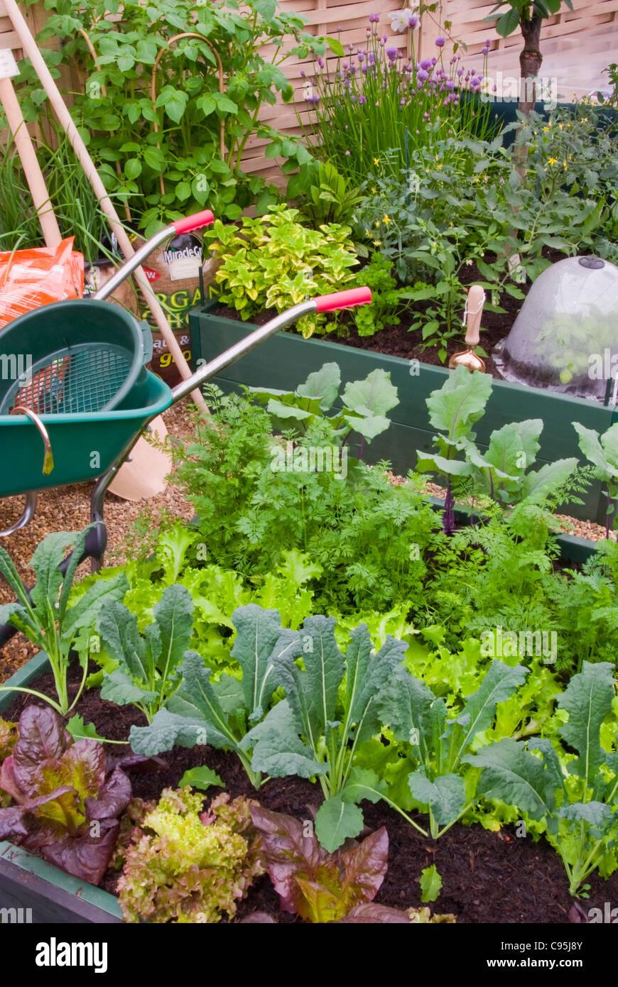 Vegetable Garden Garten Haus Mit Schubkarre Cloche Kaltrahmen