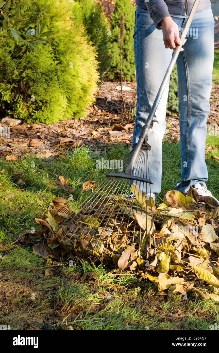 Herbstgarten stockfotos herbstgarten bilder alamy for Garten arbeiten