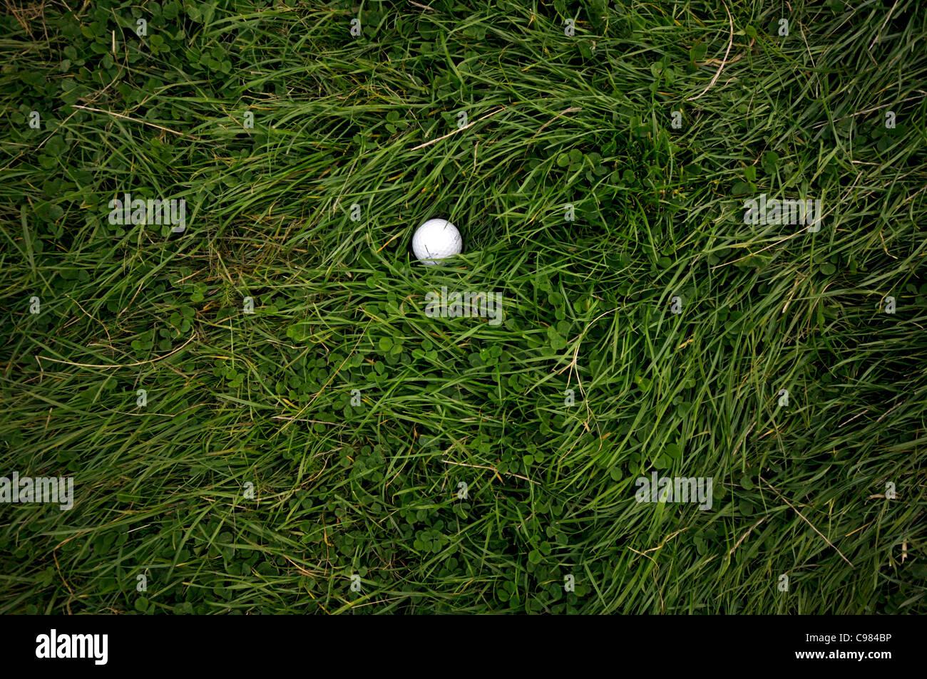 Golfball auf dem groben, langen Rasen, Golfplatz Stockbild