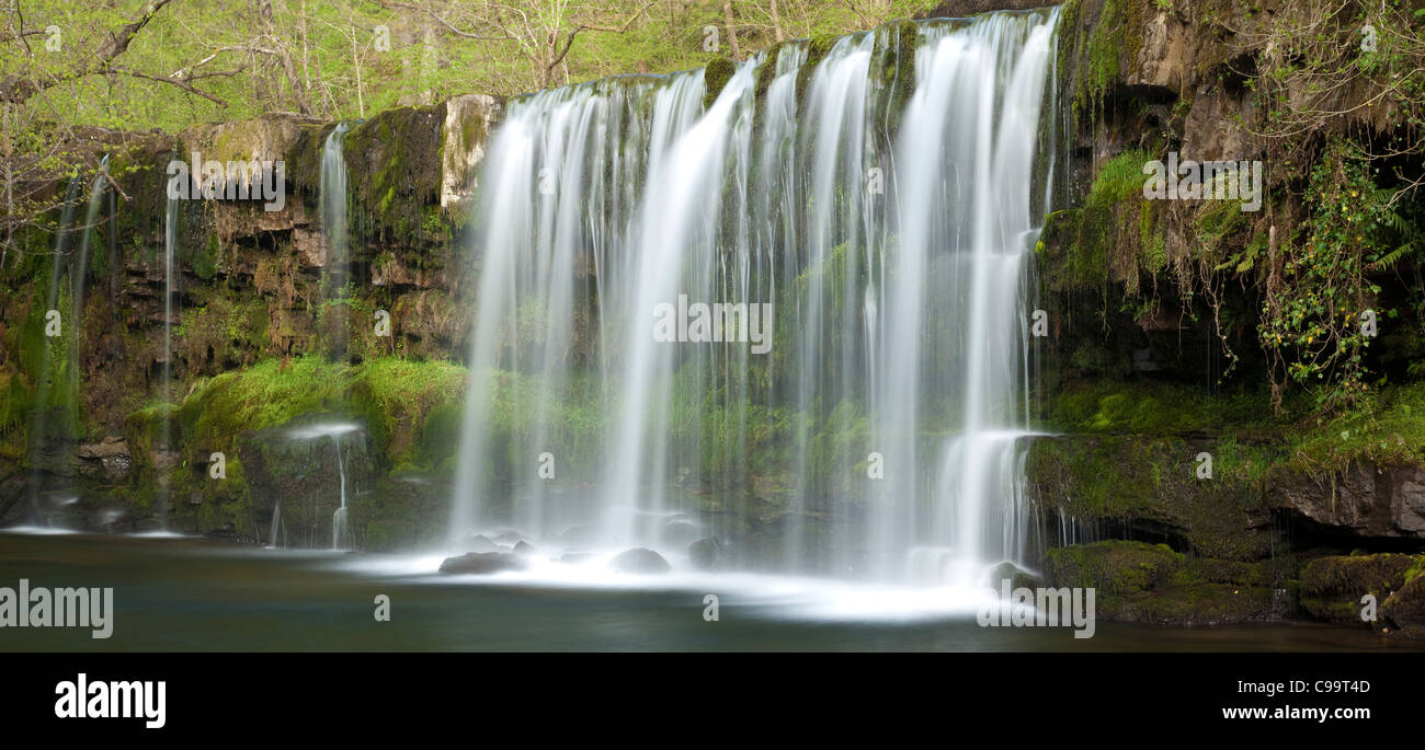 Wald-Fluss und Wasserfall, Wales, UK Stockbild