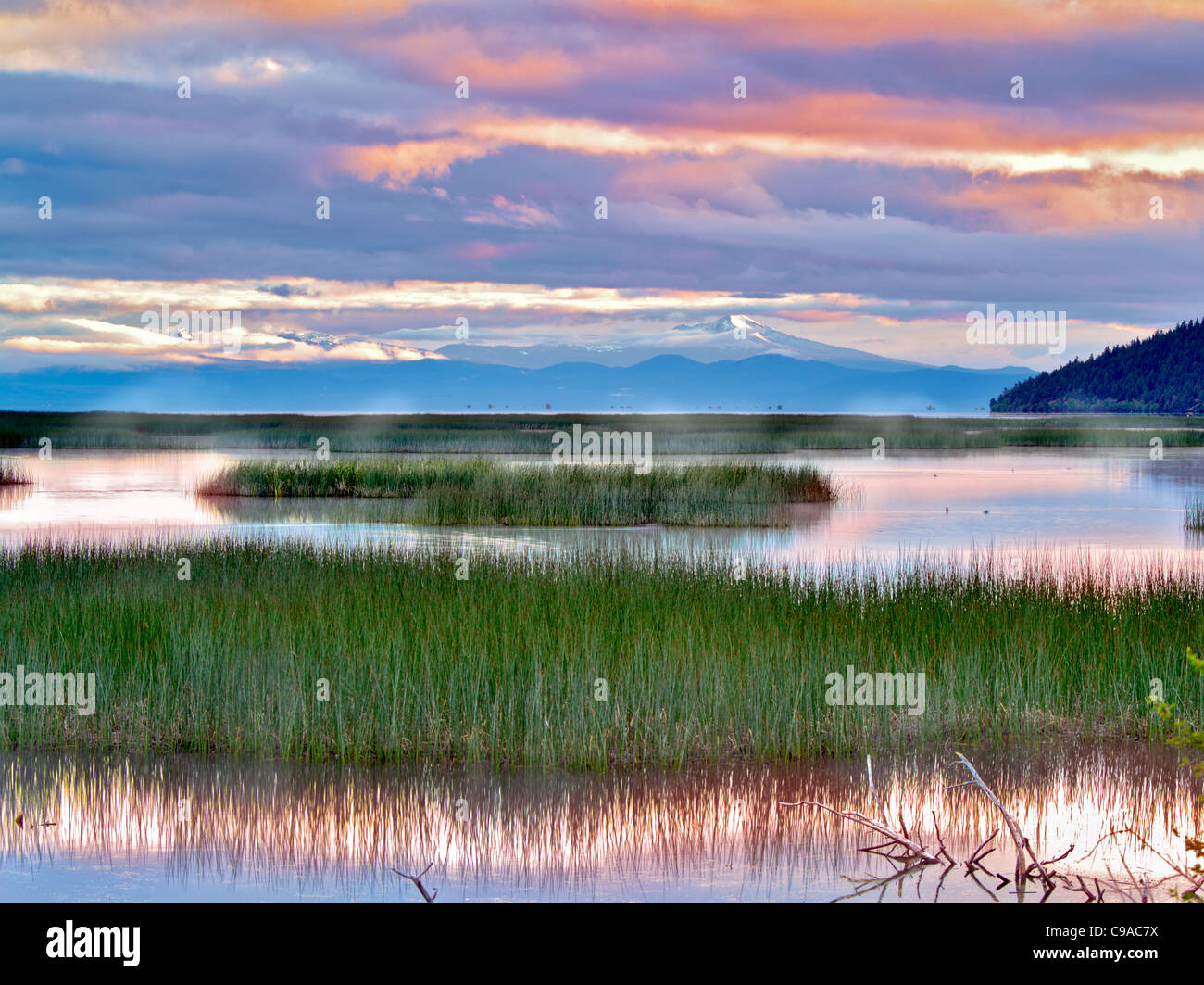 Shoalwater Bay auf Upper Klamath Lake bei Sonnenaufgang. Oregon Stockbild