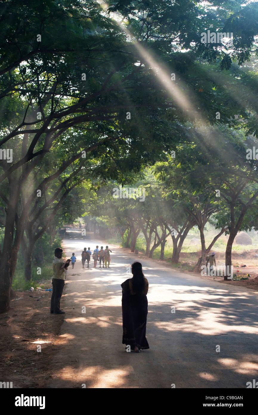 Silhouette einer indischen Frau hinunter eine Sonne beleuchteten Baum Weg gesäumt. Andhra Pradesh, Indien Stockfoto