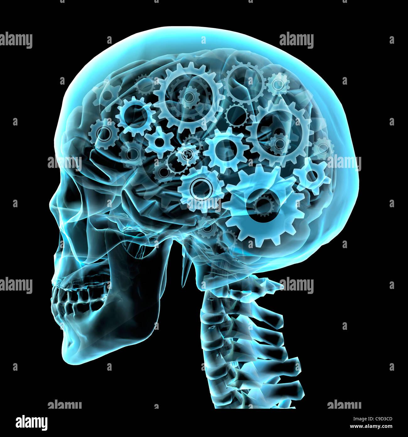 Gehirn mit Zahnrädern, Digital erzeugte Bild von Hank Grebe Stockbild