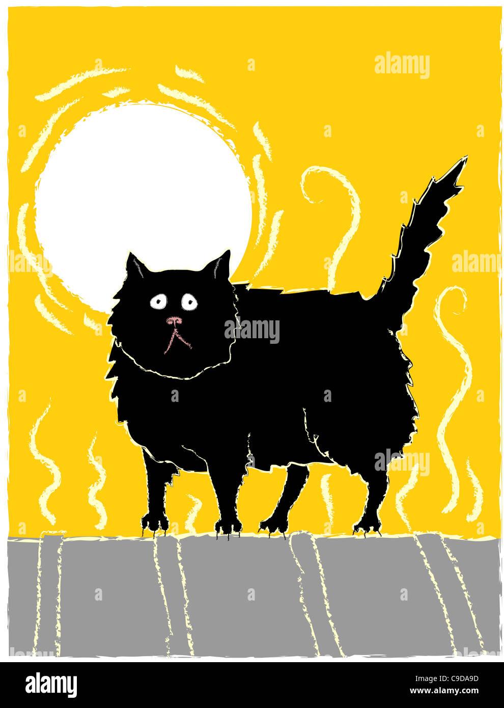 CAT ON A HOT TIN ROOF 20 Film mit Elizabeth Taylor und Paul ...
