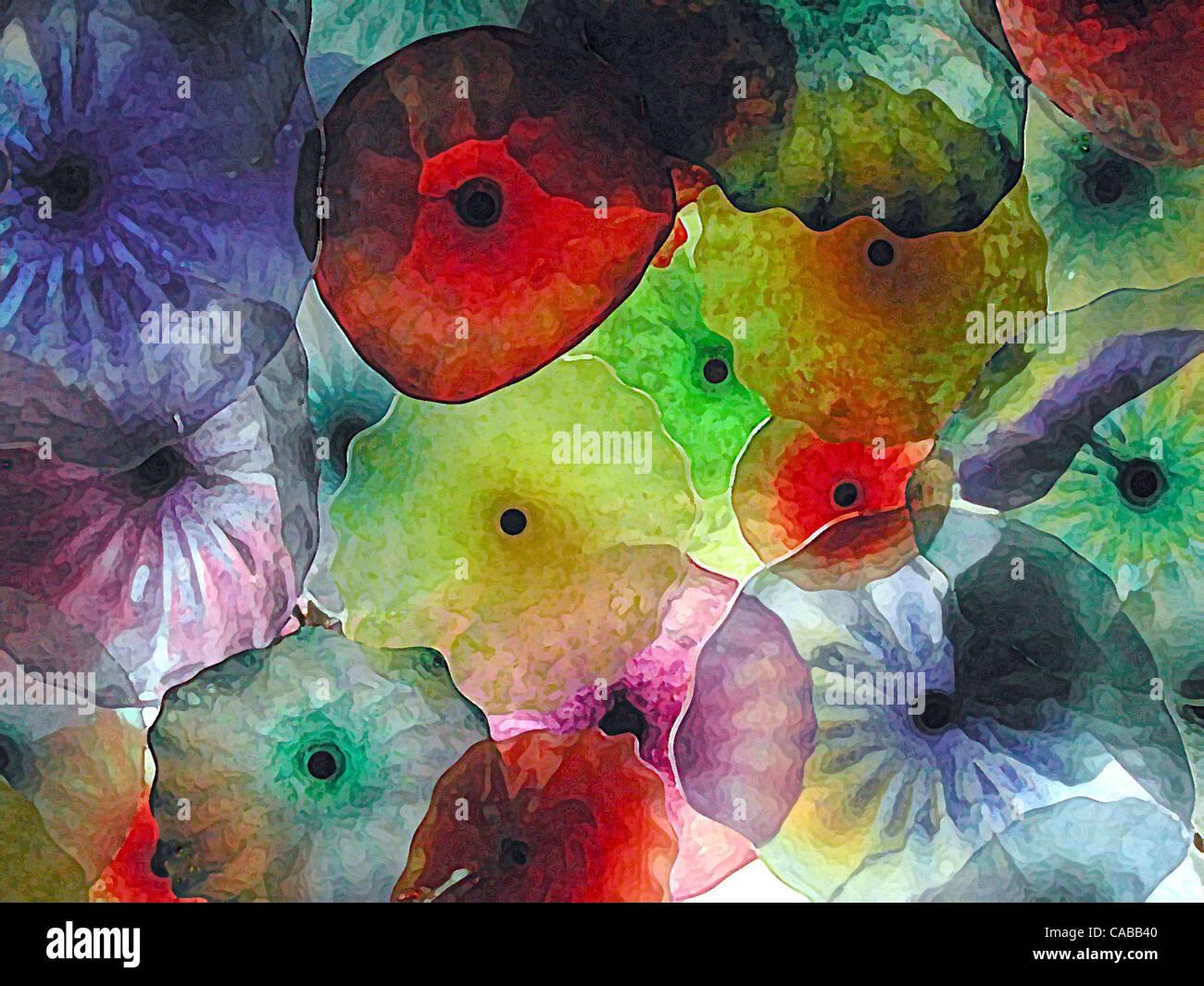3. Juni 2004; Los Angeles, Kalifornien, USA; Abstrakte Glasblumen. Stockfoto