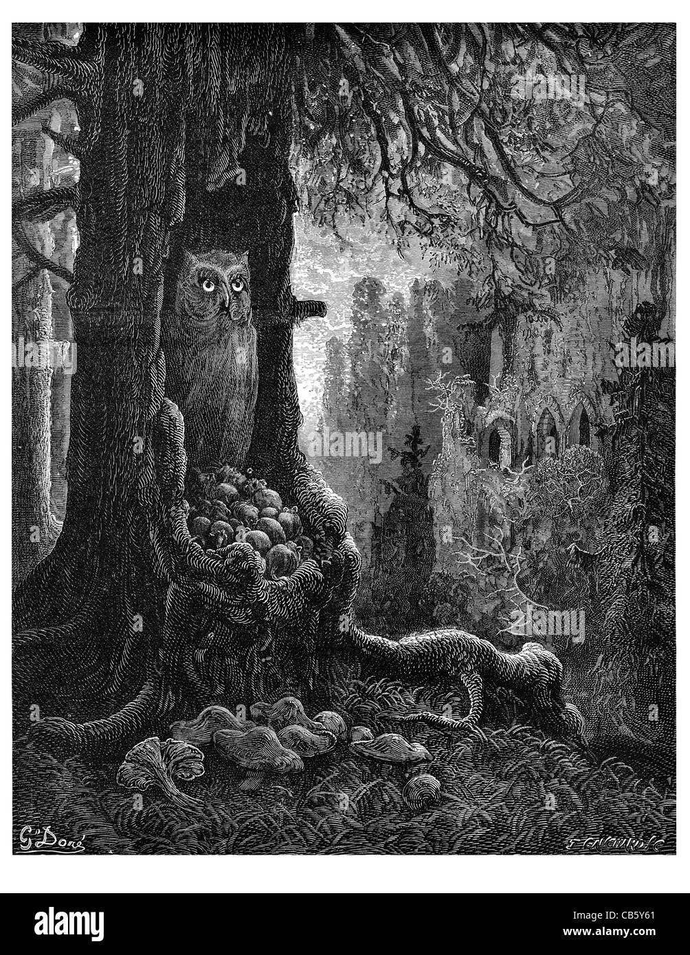 Mäuse und Katze-Spuk Eule nisten Baumstamm Wald Wald Ruinen Ruine dunkle Nacht Ratte Nagetier Maus Pilz wilde Stockbild