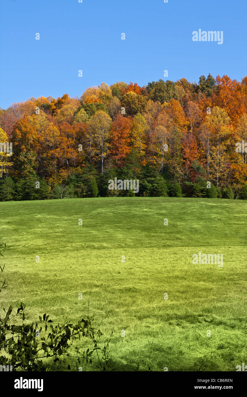 Herbst-Landschaft in McMinn County, Tennessee, USA Stockfoto
