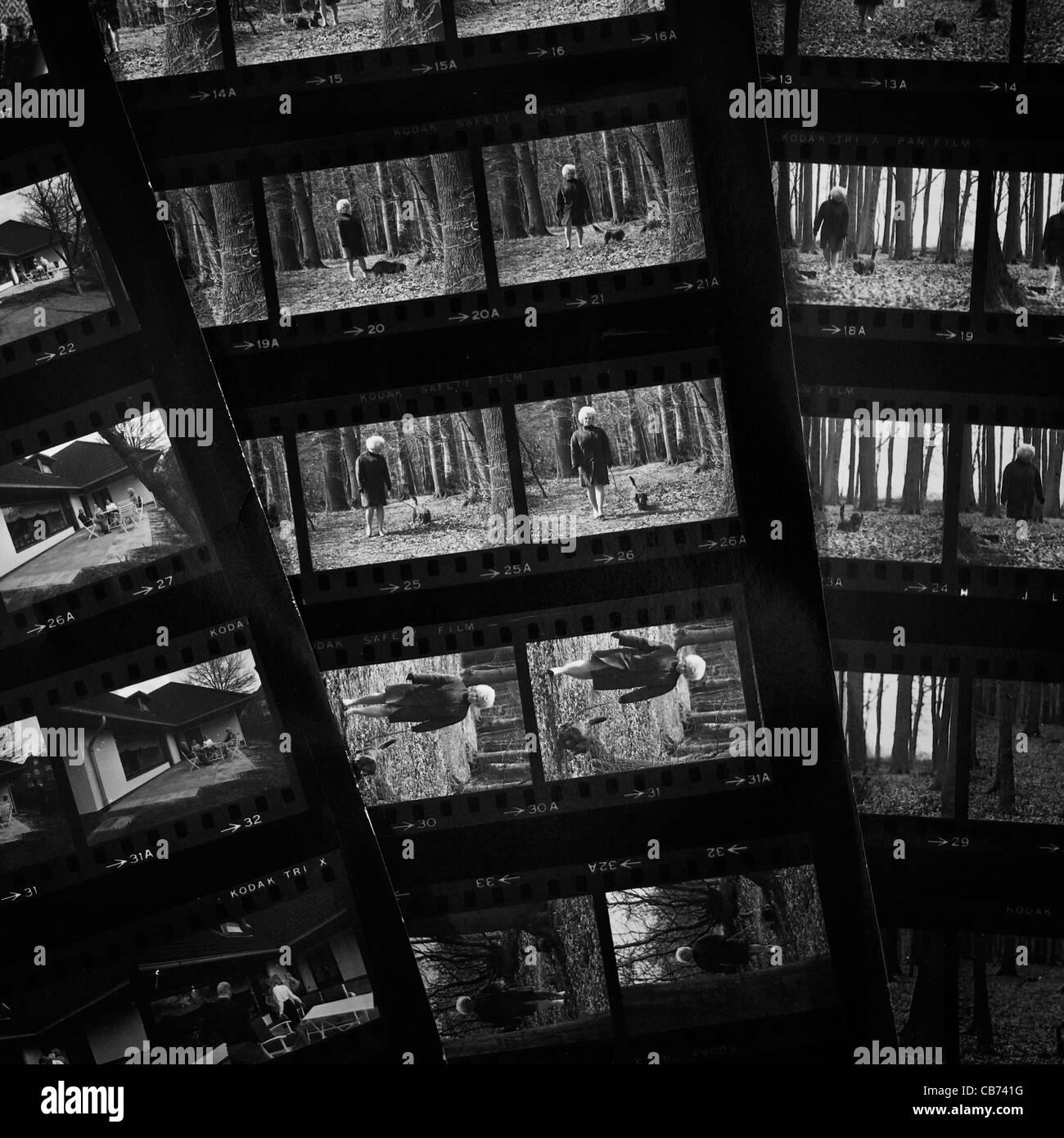 Kontaktabzüge in schwarz und weiß aus den 1960er Jahren Stockbild