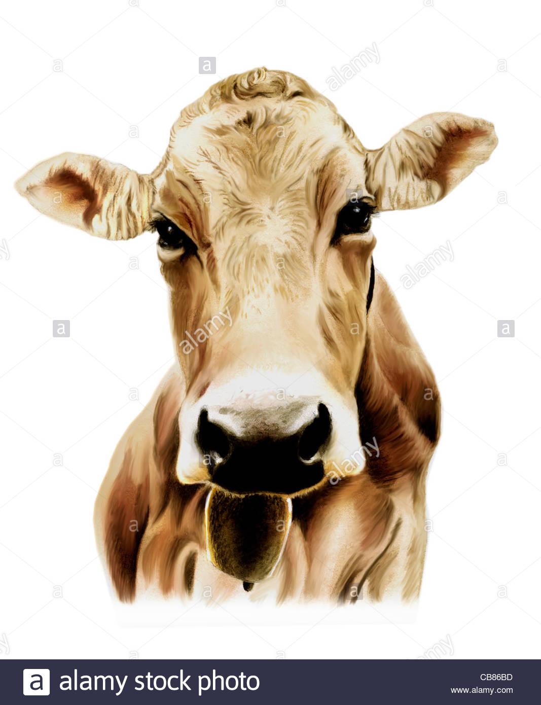 Cow Drawing Stockfotos & Cow Drawing Bilder - Alamy