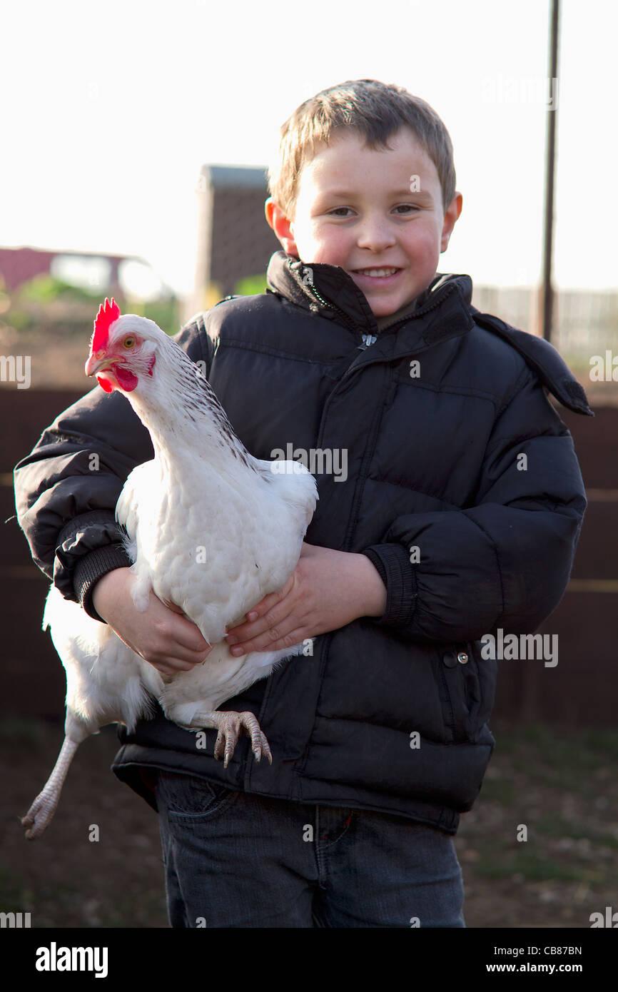 Junge hält einen weißen Sussex Henne Stockbild