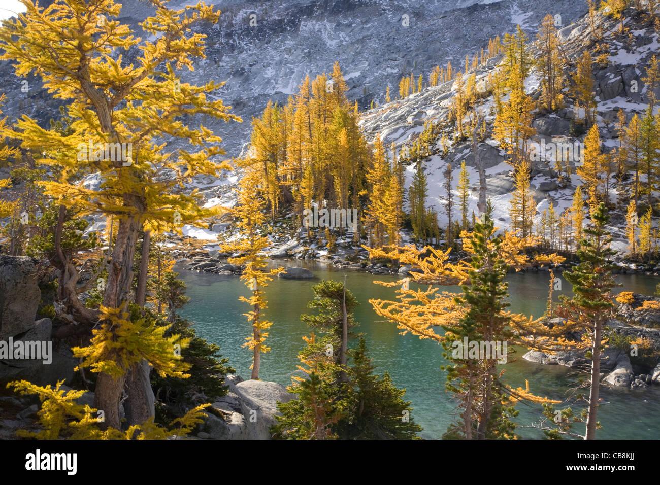 Herbst Farbe unter den Lärchen wachsen um Perfektion See im Zauber Seen Becken mit der alpinen Seen-Wildnis. Stockbild