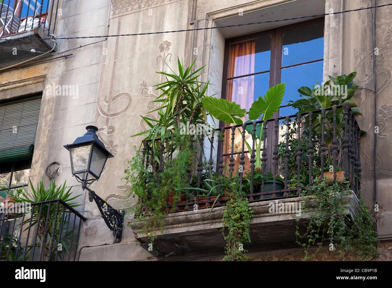 Balkon Garten mit Palmen im Barri Gòtic / gotische Viertel in Barcelona, Spanien Stockbild