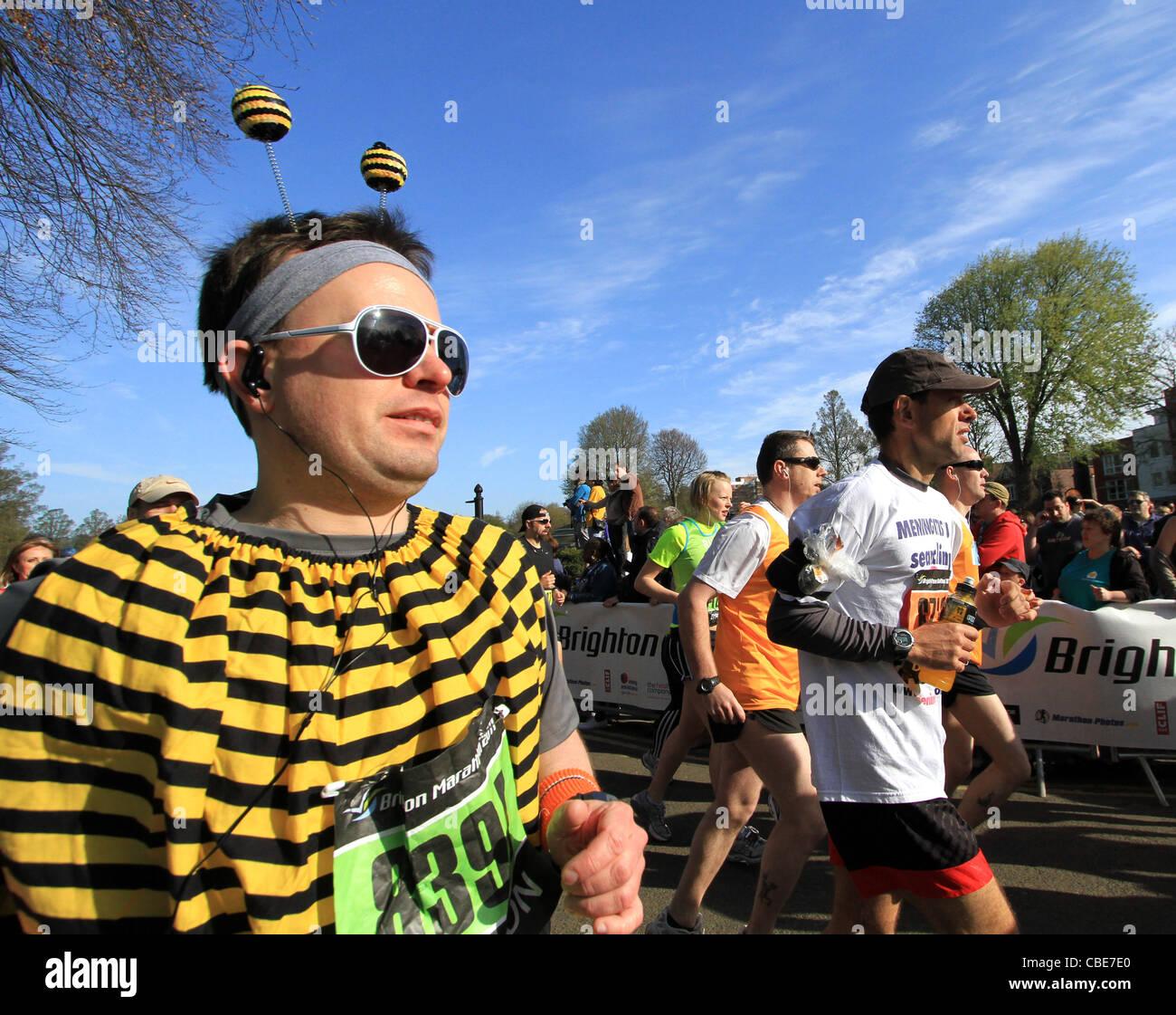 Zu Beginn des Brighton Marathon Läufer Stockfoto