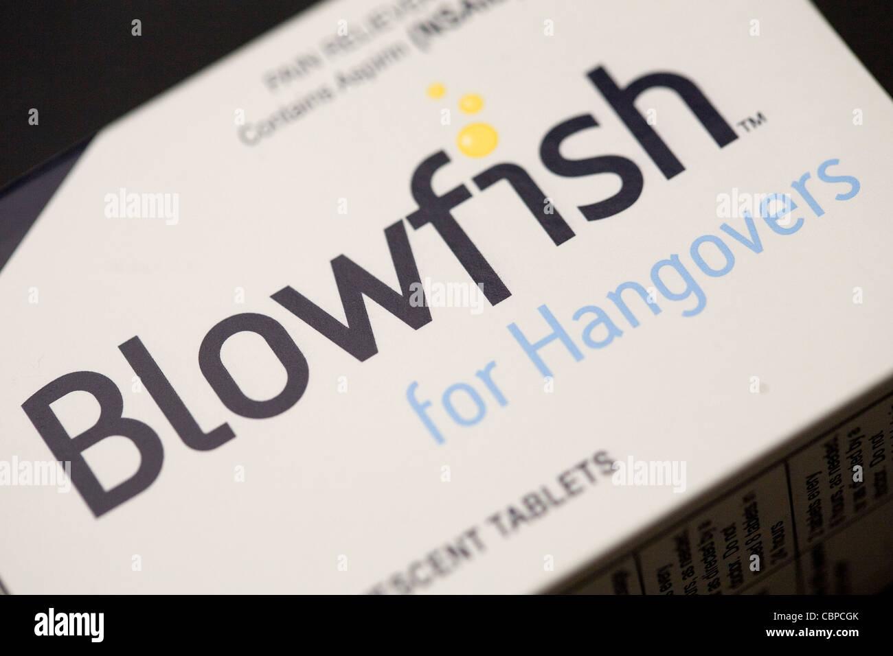 Blowfish - FDA genehmigt Kater. Stockbild