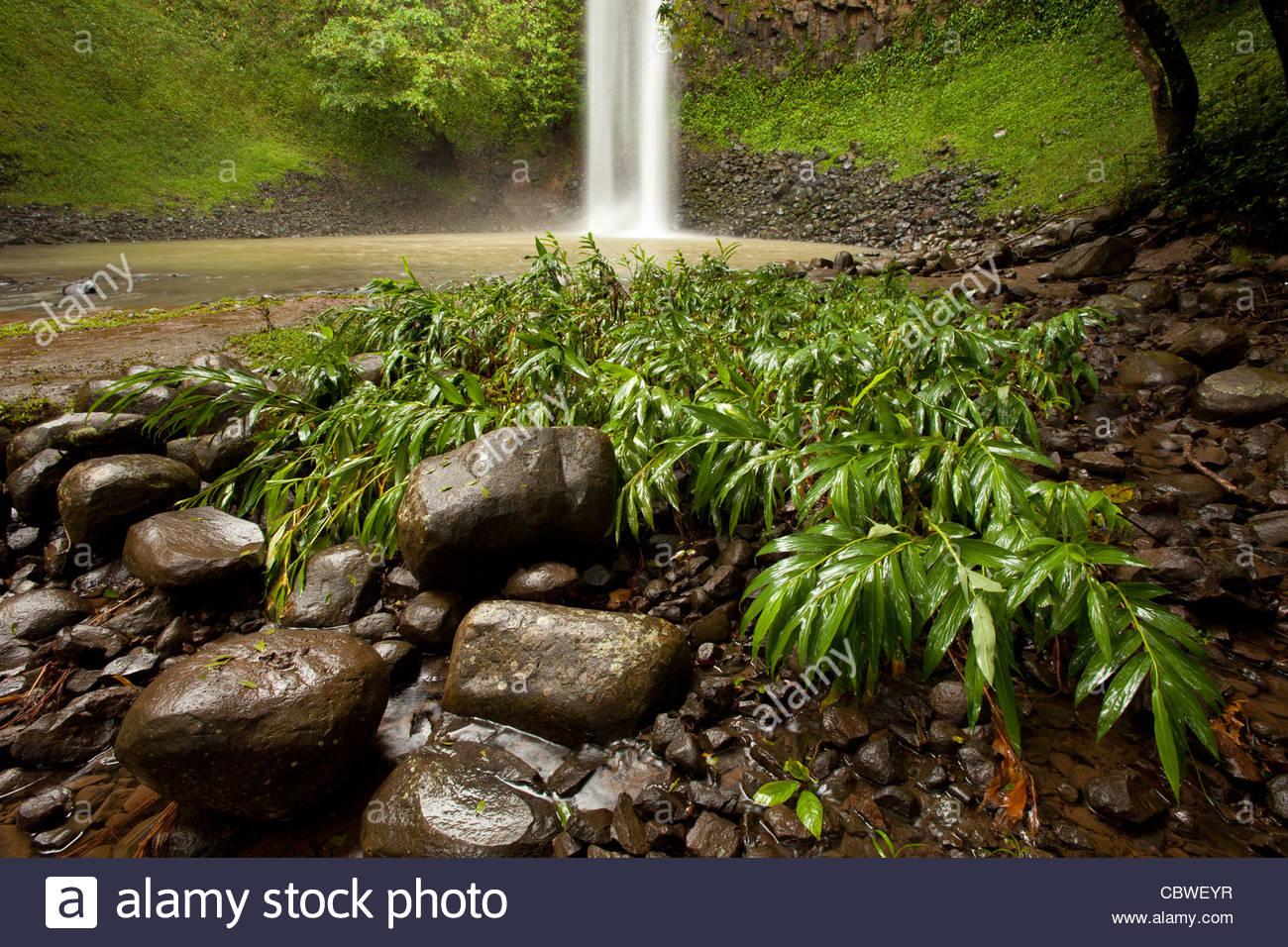 Wasserfall Chorro Las Palmas, in Area Recreativa El Salto de Las Palmas, Provinz Veraguas, Republik von Panama. Stockbild