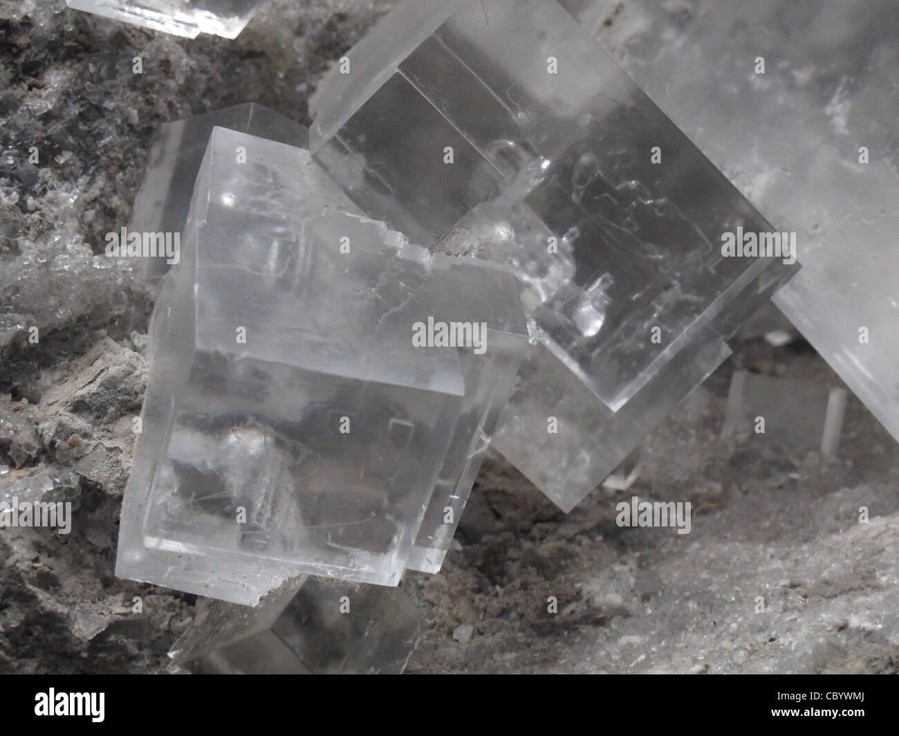 Rock Salt Crystal Cube auch genannt Halit, ein Mineral Form von Natriumchlorid (NaCl). Stockbild