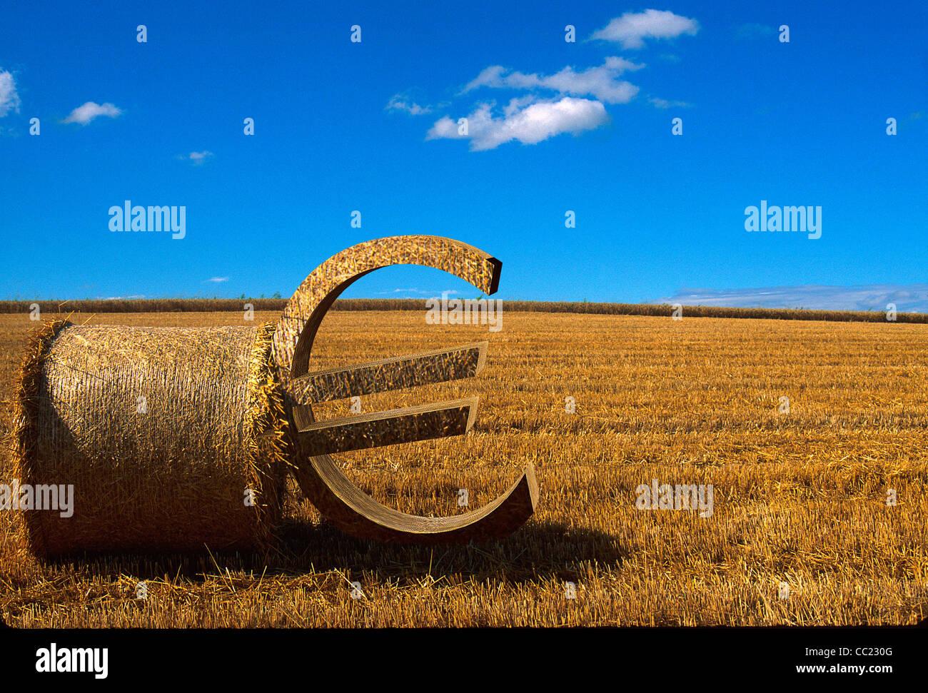 Landwirtschaft / Farming Konzept: Eurozeichen gelehnt einen Ballen Stroh auf einem abgeernteten Weizenfeld Stockbild