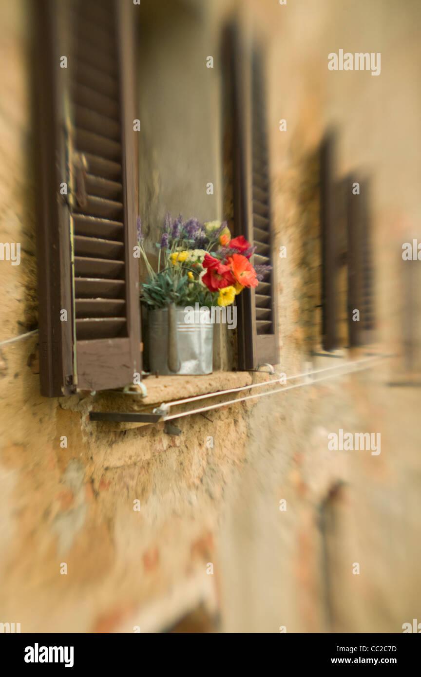 Fensterbank mit Blumen. Stockbild