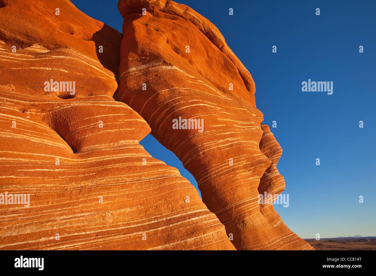 Sandstein, Hoodoos, Felsformationen, Ward Terrasse, Navajo Nation, Coconino County, Arizona, USA Stockfoto