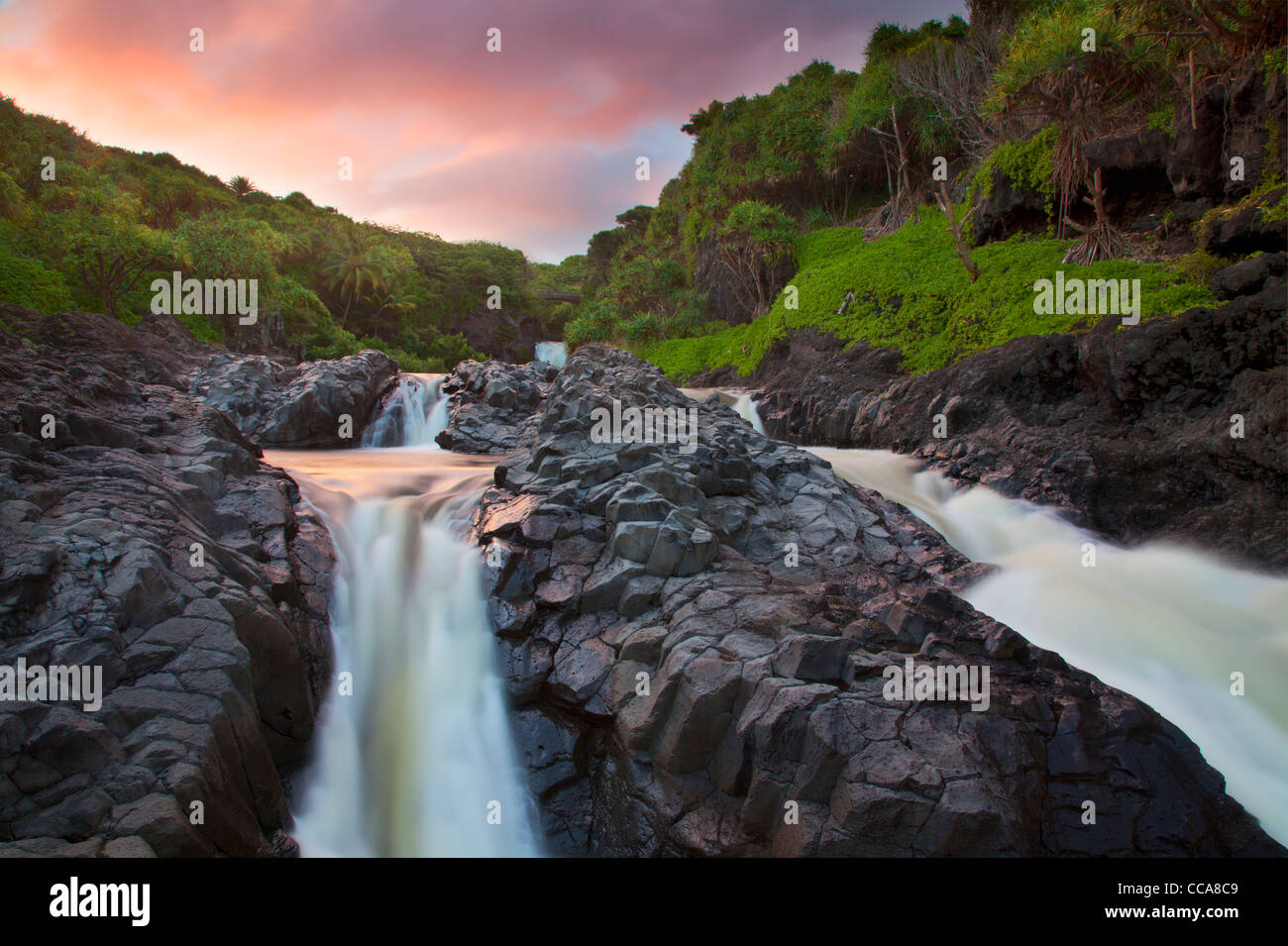 Ohe Gulch - aka sieben Sacred Pools, Haleakala National Park, in der Nähe von Hana, Maui, Hawaii. Stockbild